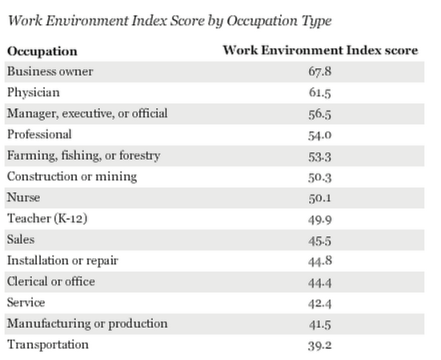 Work Environment Index Score